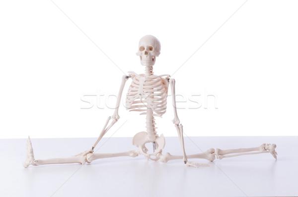 Vicces csontváz izolált fehér kéz férfi Stock fotó © Elnur