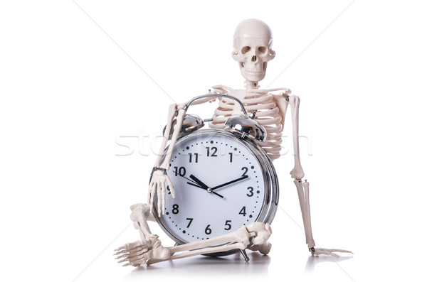 Skeleton with alarm clock on the white Stock photo © Elnur