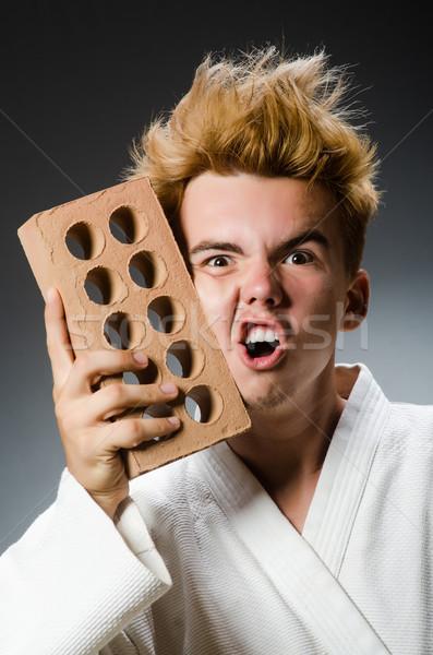 Funny karate myśliwiec glina cegły model Zdjęcia stock © Elnur