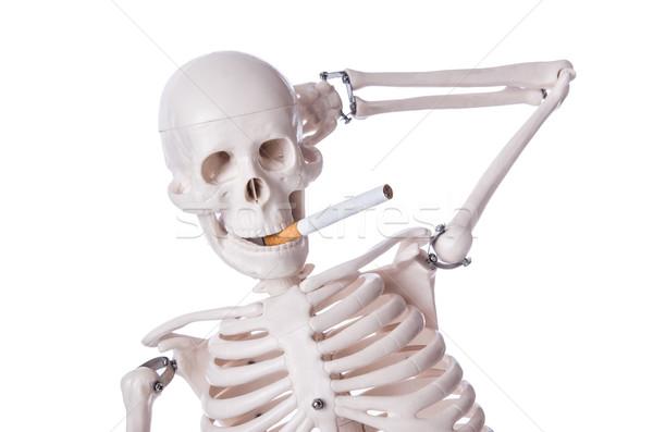 Esqueleto fumador cigarro isolado branco homem Foto stock © Elnur