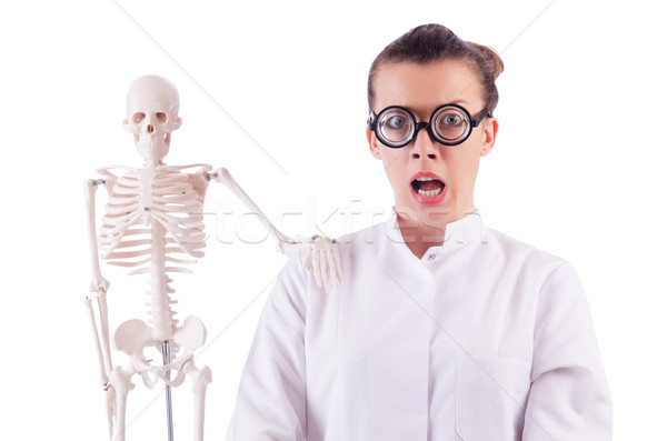 Doctor with skeleton on white Stock photo © Elnur