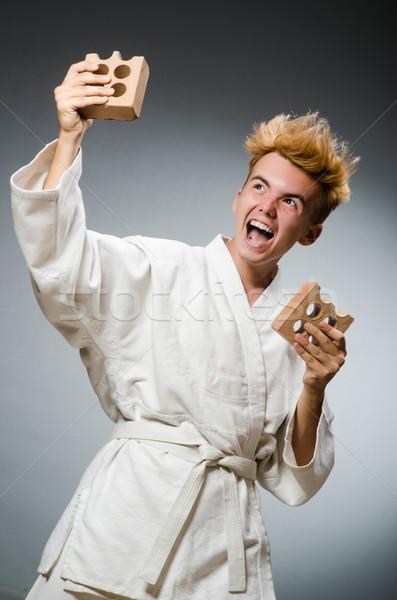 смешные каратэ истребитель глина кирпичных человека Сток-фото © Elnur