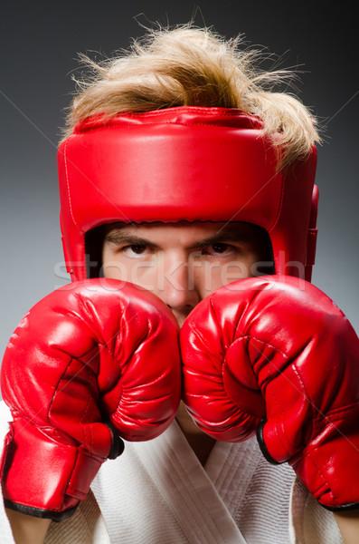Funny bokser ciemne strony tle polu Zdjęcia stock © Elnur