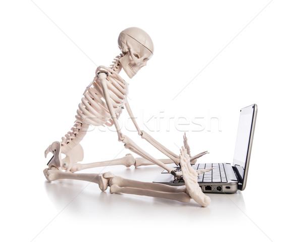 Esqueleto trabalhando laptop negócio tecnologia teclado Foto stock © Elnur