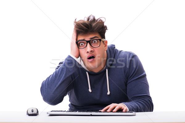 Stok fotoğraf: Komik · inek · öğrenci · adam · çalışma · bilgisayar · yalıtılmış