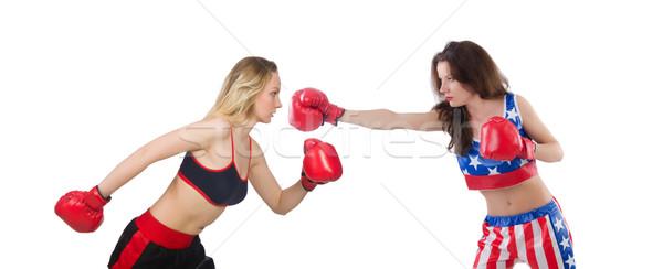 Kettő női boxeralsó harcol izolált fehér Stock fotó © Elnur