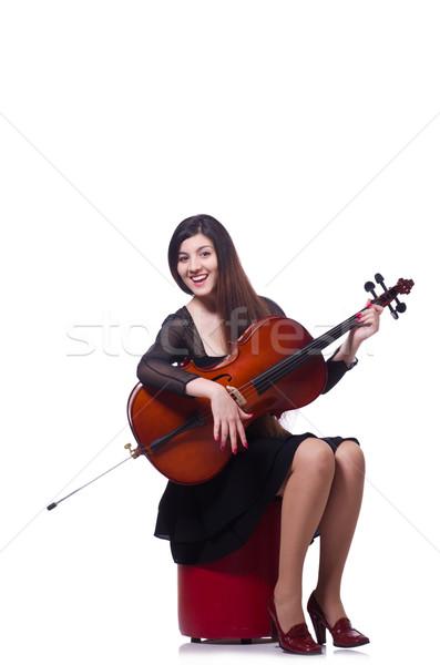Nő játszik hegedű izolált fehér művészet Stock fotó © Elnur