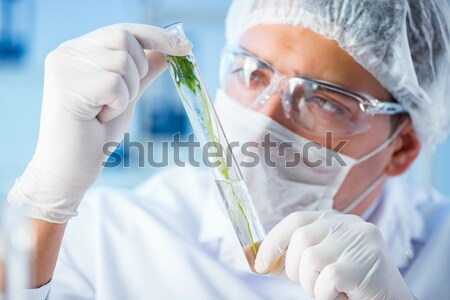 The biotechnology scientist chemist working in lab Stock photo © Elnur