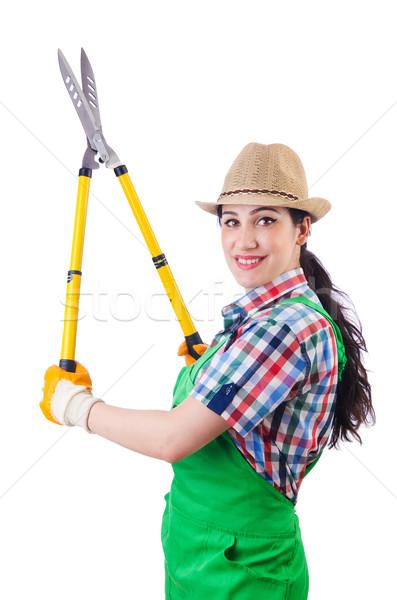 Woman gardener with shears on white Stock photo © Elnur