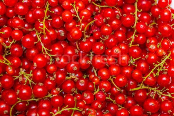 Piros ribiszke bogyók textúra étel természet Stock fotó © Elnur