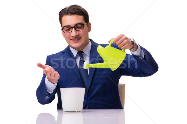 Businessman with watering can isolated on white Stock photo © Elnur