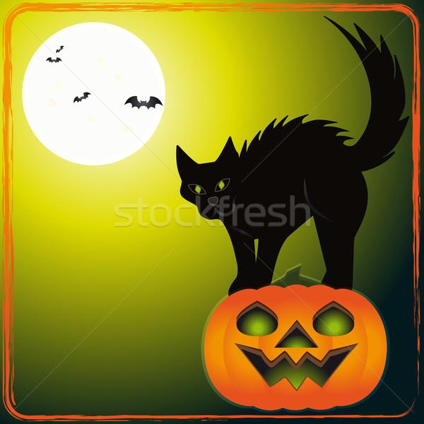 Scary kat illustratie pompoen dag halloween Stockfoto © Elsyann
