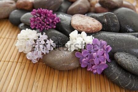 Diferente cor pedras bambu rocha Foto stock © elvinstar