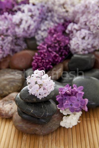 Rocha flores rochas pedras bambu Foto stock © elvinstar