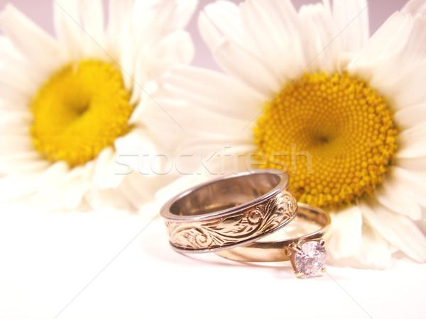 Foto stock: Margarida · amor · anéis · de · casamento · flor · casamento · ouro
