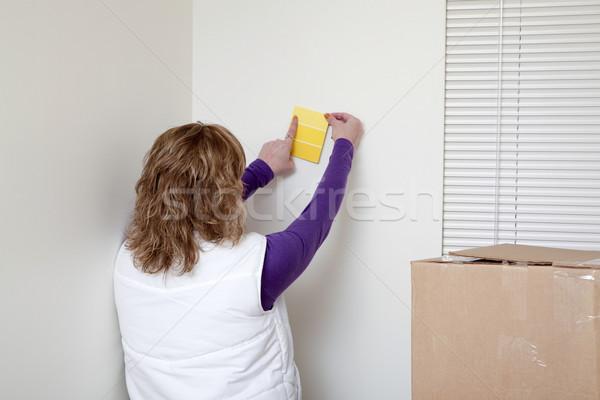 Listo pintura mujer colores pared Foto stock © elvinstar