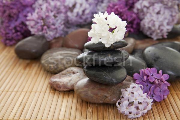 Rochas flores bambu foco Foto stock © elvinstar