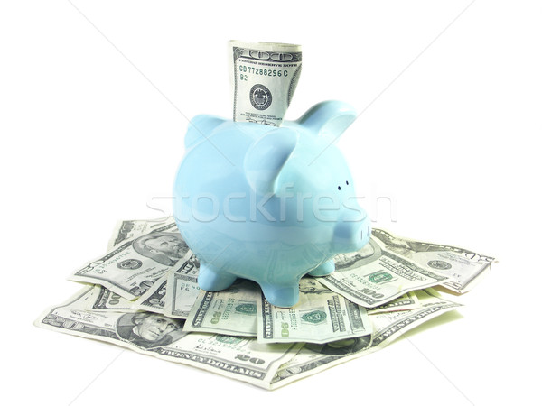Feliz perfil um cem dólar Foto stock © elvinstar