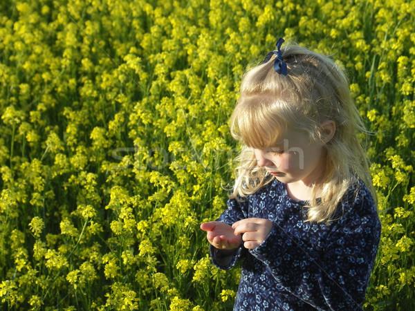 Nina campo flores joven algo Foto stock © elvinstar