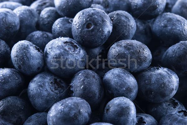 Mirtilos fresco gotas de água fruto dieta Foto stock © elvinstar