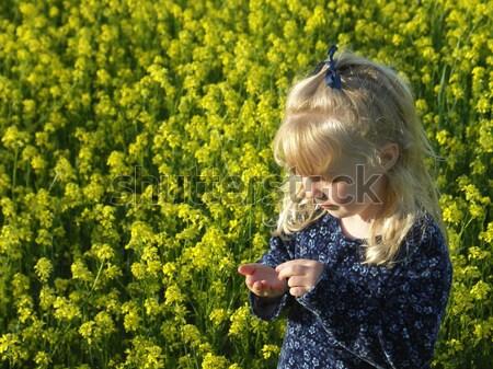 Olor flores joven flores amarillas campo flor Foto stock © elvinstar
