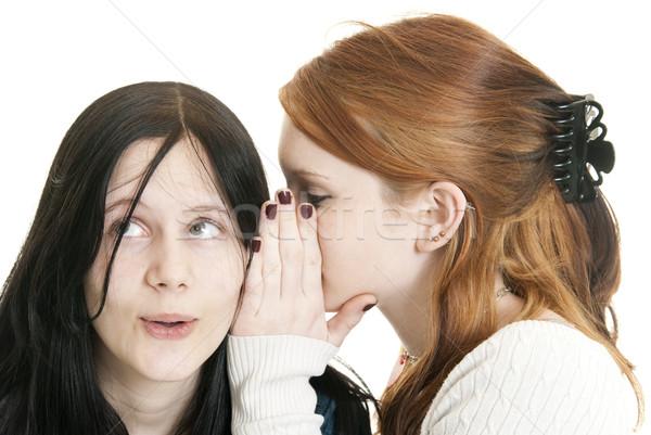 Nővérek osztás titkok tini kaukázusi lány Stock fotó © elvinstar