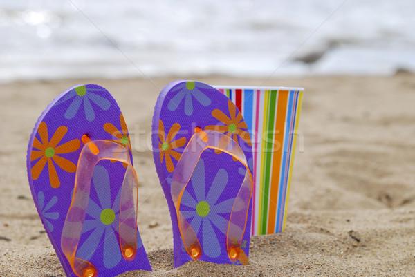 Día playa colorido taza sol Foto stock © elvinstar