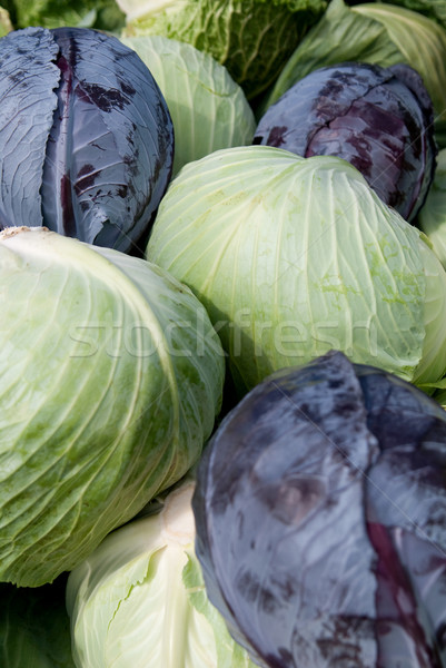 Stock fotó: Köteg · káposzta · zöld · lila · farm · áll