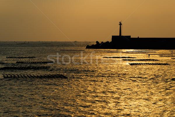 Silhouette of tower Stock photo © elwynn