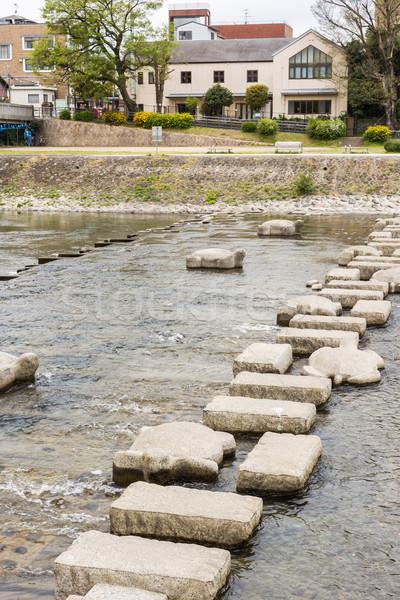 камней каменные черепаха рок реке животные Сток-фото © elwynn