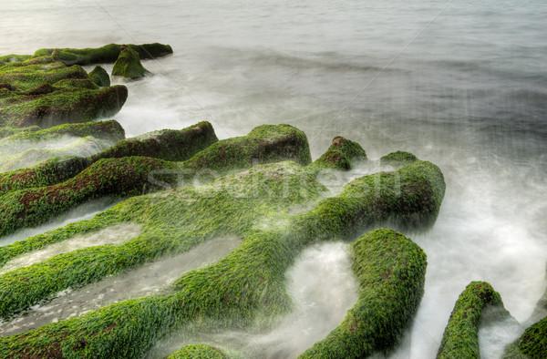 Tájkép hínár part drámai tenger hullám Stock fotó © elwynn
