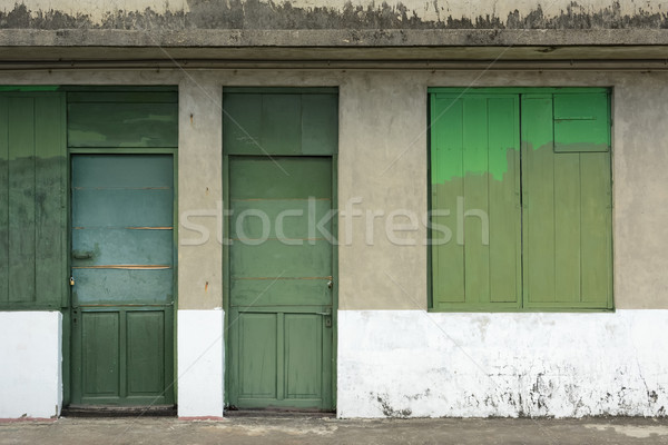 Old grunged door Stock photo © elwynn