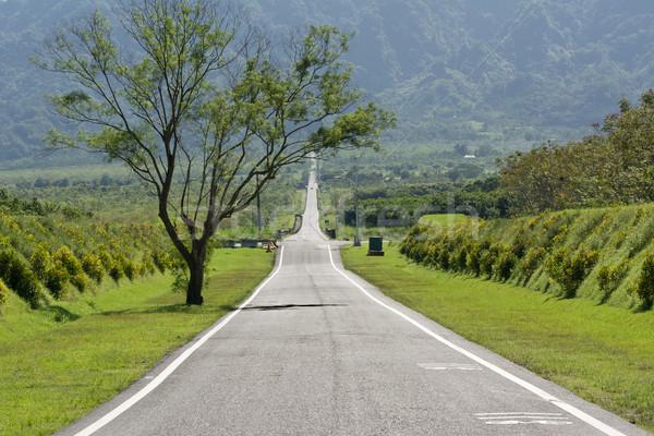 Weg niemand landelijk dag verkeer vrijheid Stockfoto © elwynn