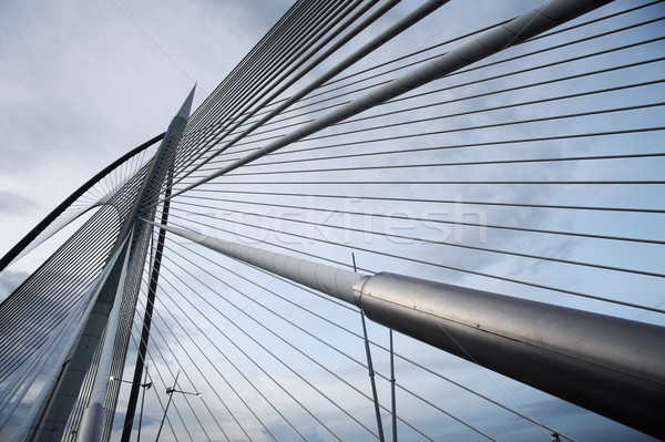 modern bridge Stock photo © elwynn