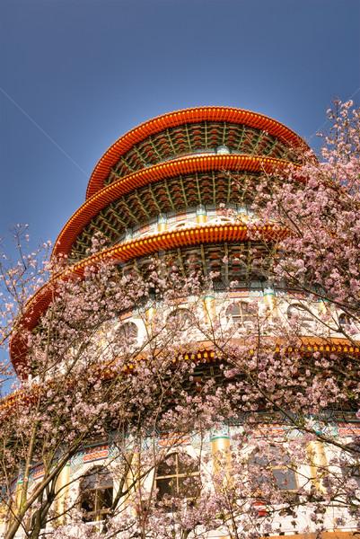 Pagoda sakura fiori cielo blu primavera cielo Foto d'archivio © elwynn