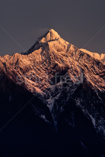 Mt. Jade peak in dawn Stock photo © elwynn