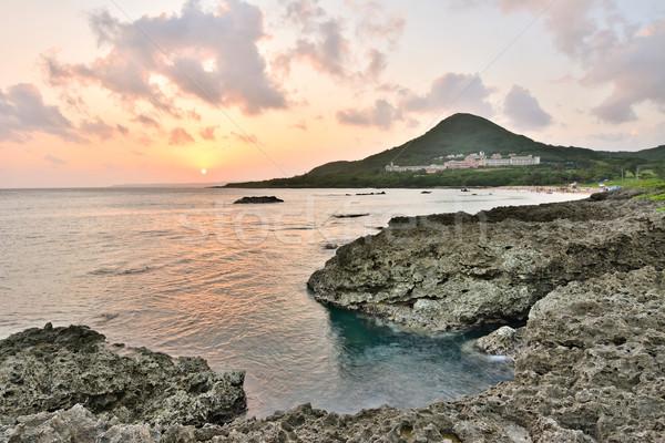 Wygaśnięcia koral wybrzeża line parku Tajwan Zdjęcia stock © elwynn