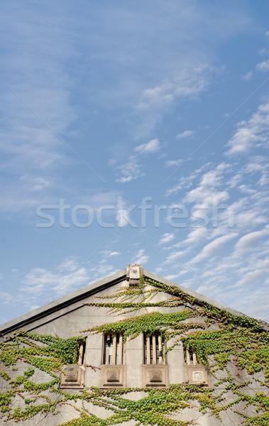 Old house Stock photo © elwynn