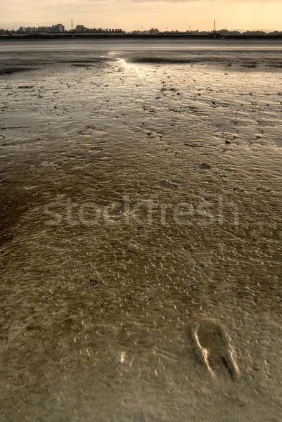 footprint Stock photo © elwynn