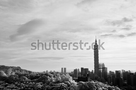 Cityscape with 101 skyscraper Stock photo © elwynn