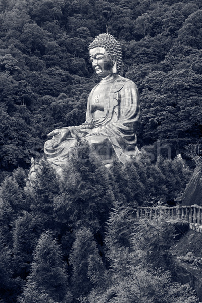Giant copper buddha statue Stock photo © elwynn