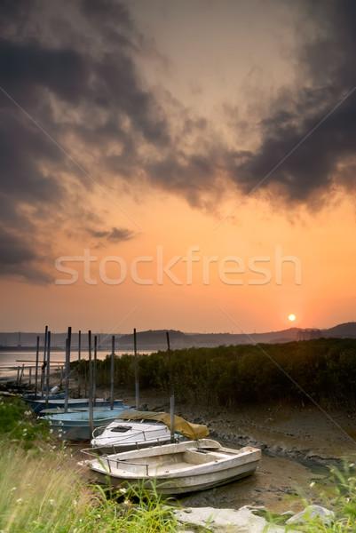 Discard boats Stock photo © elwynn
