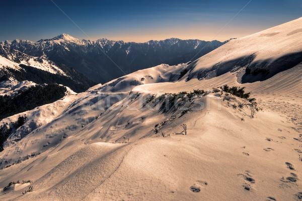 color mountain Stock photo © elwynn
