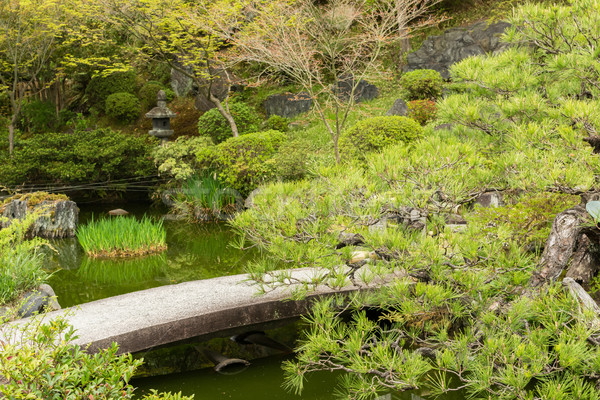 Scenery Japanese garden  Stock photo © elwynn
