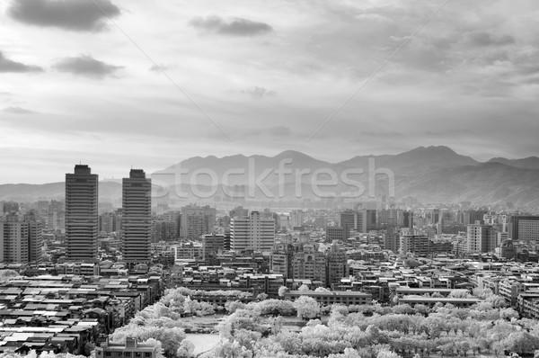 Black and white cityscape Stock photo © elwynn