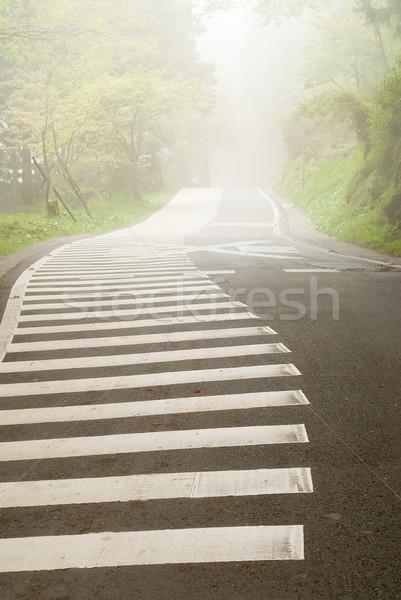 туман дороги лес никто дерево Сток-фото © elwynn