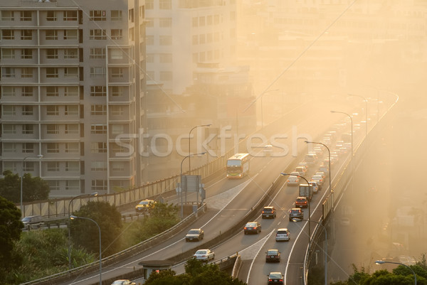 Air pollution Stock photo © elwynn