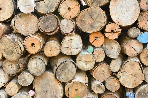 Pile of wood logs Stock photo © elwynn