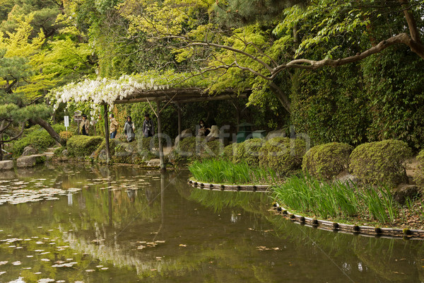 Scenario japanese giardino santuario fiori bianchi crescita Foto d'archivio © elwynn