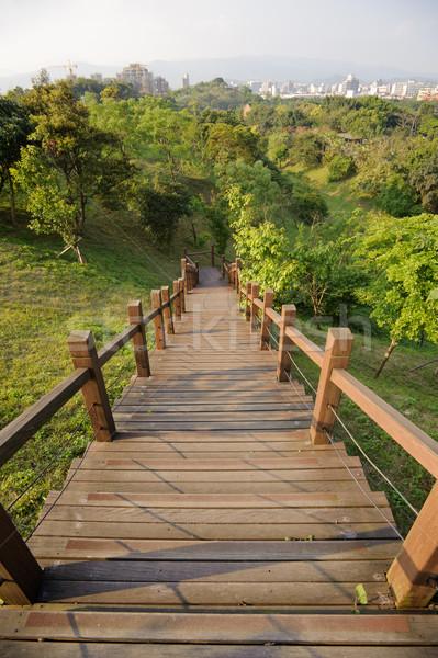 Stock fotó: Fából · készült · lépcsősor · zöld · fák · park · nappal
